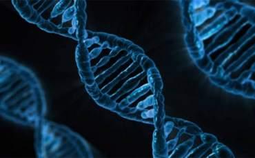 İlk Kez Canlı Hücrelere Video Yüklendi