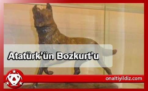 Atatürk'ün Bozkurt'u