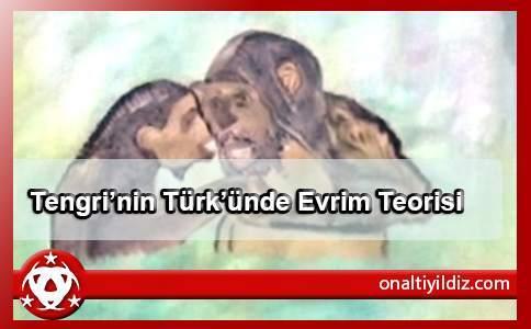 """Kurzer Abschnitt von Buch """"Gottes Türke"""" – Kapitel: Evolutionstheorie"""