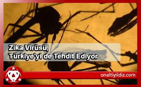 Zika Virüsü, Türkiye'yi de Tehdit Ediyor