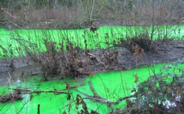 Nehir Neden Yeşil Aktı?